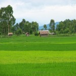 this is manipur  – twelve