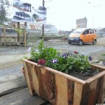 The new indegeniously built Flower planter