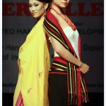 Organized by Manipur Apex Handloom Weavers and Handicrafts Artisans Cooperative Society (21)