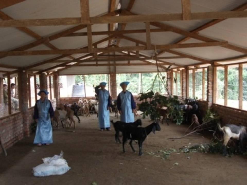 ASSAM RIFLES ENCOURAGES SELF EMPLOYMENT IN KHENGJOI BLOCK