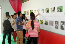 Visitors checking the photos submitted for the State-level wildlife photography contest was held today at the CC Higher Secondary School Imphal.