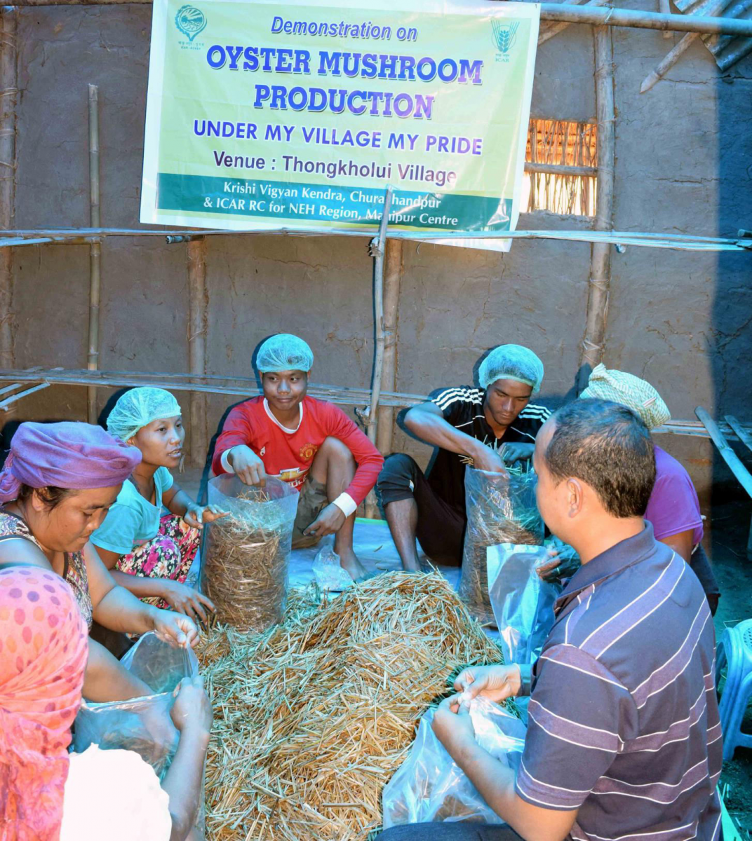 demonstration-of-mushroom-cultivation