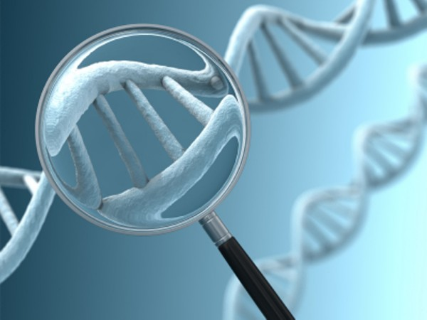 Our DNA is made up of a genetic code that contains four bases (Mentecorazonglobal/Flickr)