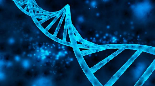 scientists-create-a-new-organism-using-synthetic-dna-paving-the-way-for-artificial-life-forms