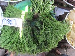 The vegetable market on the railway track in Samut Songkram province.