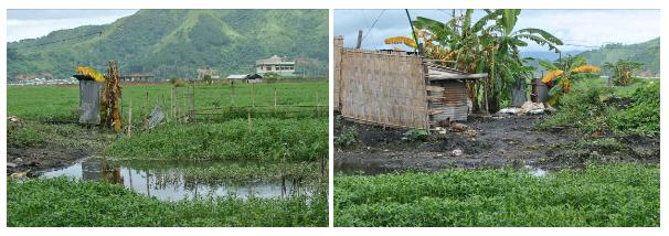 Figure 3. Unhygienic latrines inside the wetland