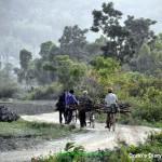 Manipur Amateur Photo Club