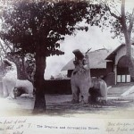 Once Upon A Time in Manipur-SanaLeibak-Set One-5