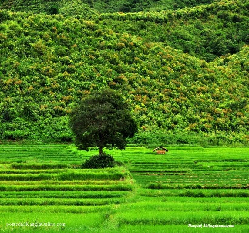 Takhel Imphal East Manipur, Beautiful Landscape of Manipur, Northeast India