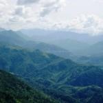 Lamdan Trip by MPC (11)