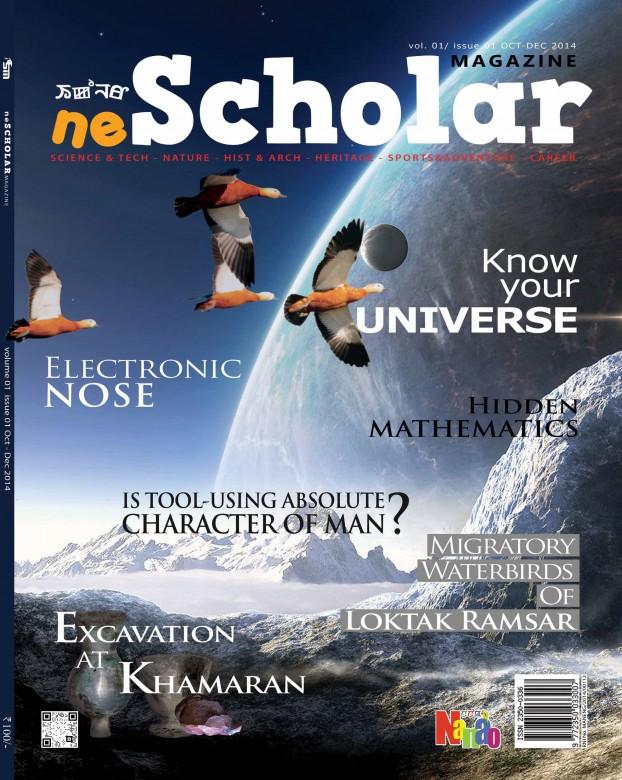 First Issue neSCHOLAR cover
