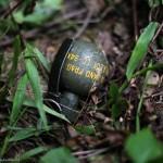 Chinese made hand granade which was found at the ambush site at Paraolon, Chandel District, Manipur. Photo by Deepak Shijagurumayum.