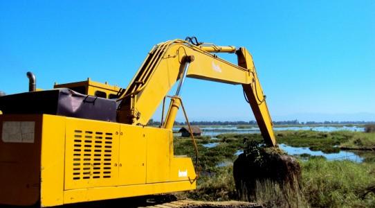 Phoomdi removal from Loktak